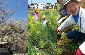 育てる 「園芸福祉療法」とは