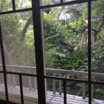 自然工房めばえ|懐かしい窓枠から庭を望む